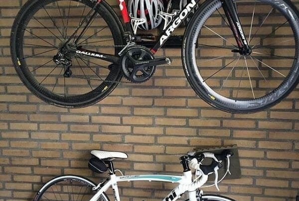 Shed suspension system racingbike