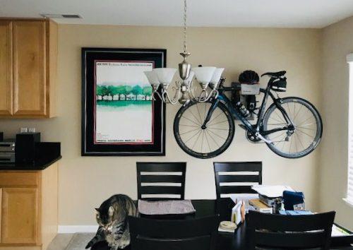 Store racing bike in the livingsroom