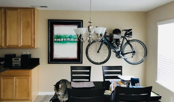 Store racing bike in the livingsroom